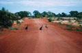Explore Outback Western Australia